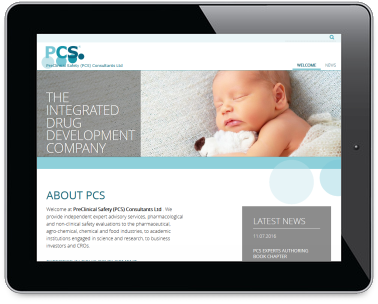 responsives Webdesign: www.pcsconsultants.com